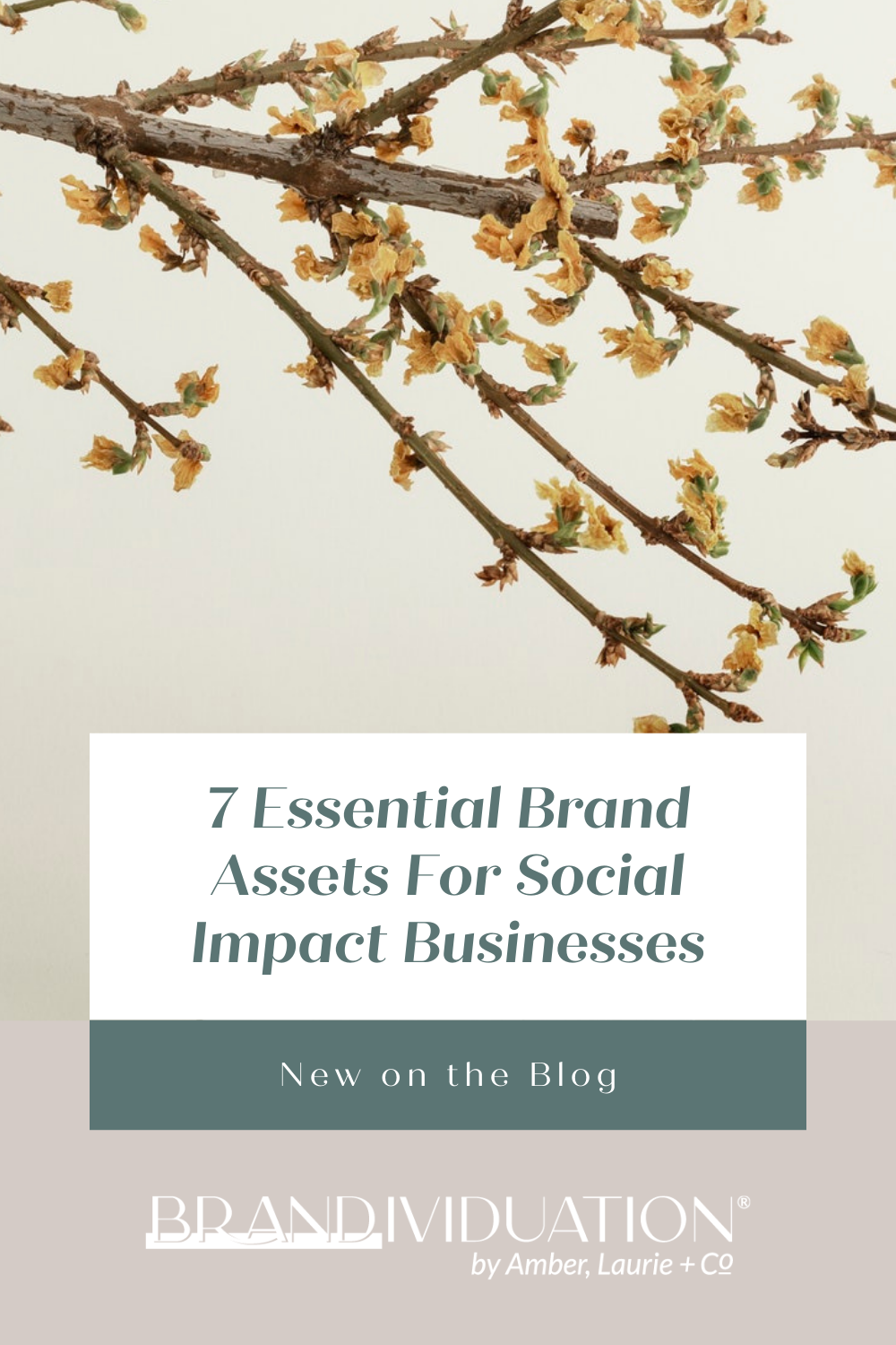 7 Essential Brand Assets For Social Impact Businesses